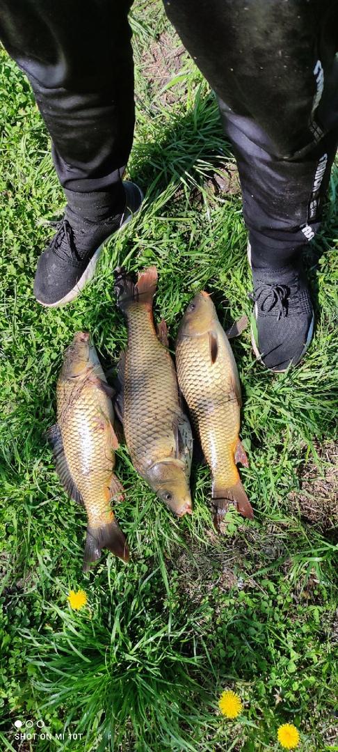 Отчет о рыбалке: Река Кобылинка — Колпнянский район — Центральный федеральный округ, Орловская область