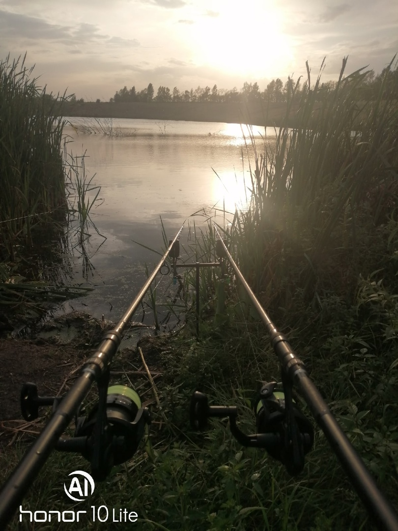 Отчет о рыбалке: Водоём #352875611 — Жердевский район — Центральный федеральный округ, Тамбовская область