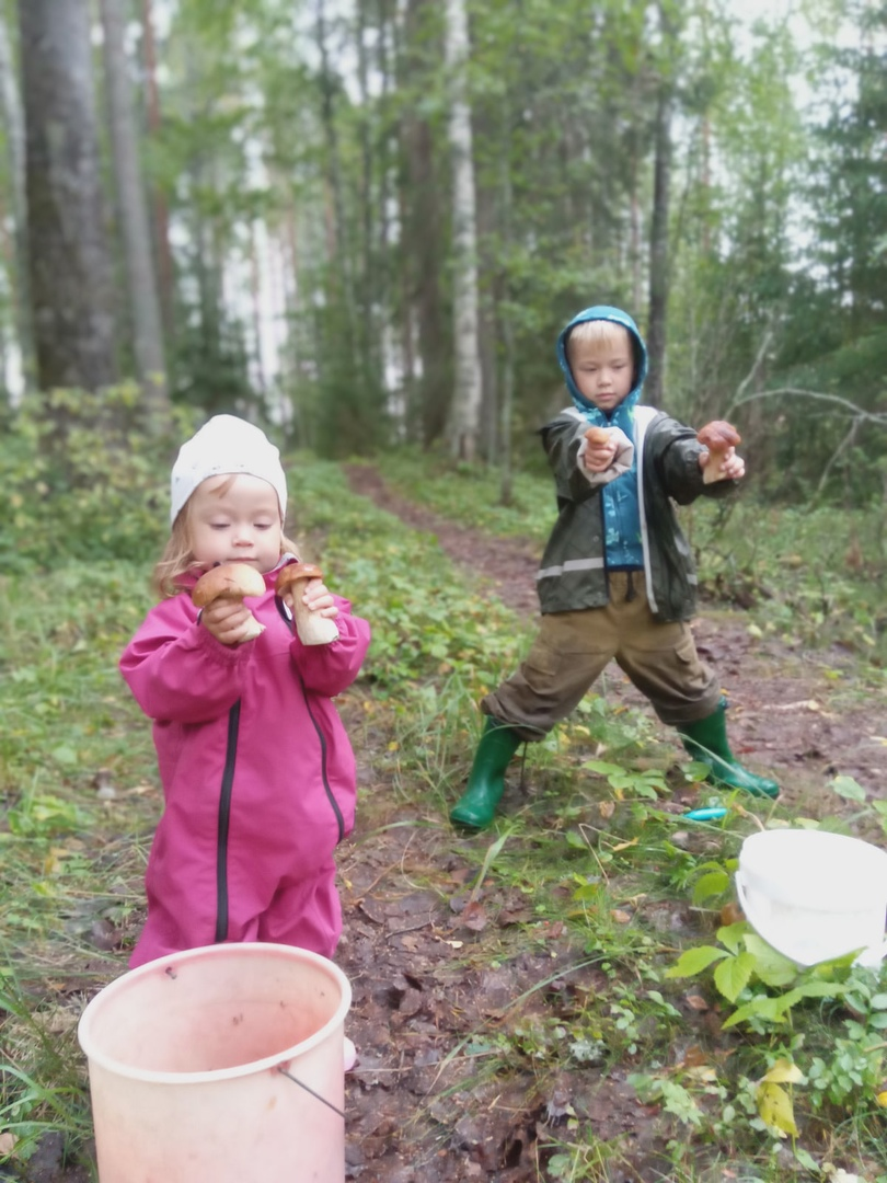 Отчет о рыбалке: Водоём #226753498 — Крошнозерское сельское поселение — Северо-Западный федеральный округ, Республика Карелия