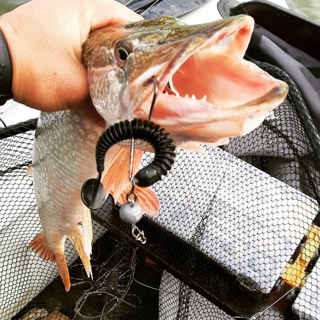 Отчет о рыбалке: Река Ишим — Ишимский район — Уральский федеральный округ, Тюменская область