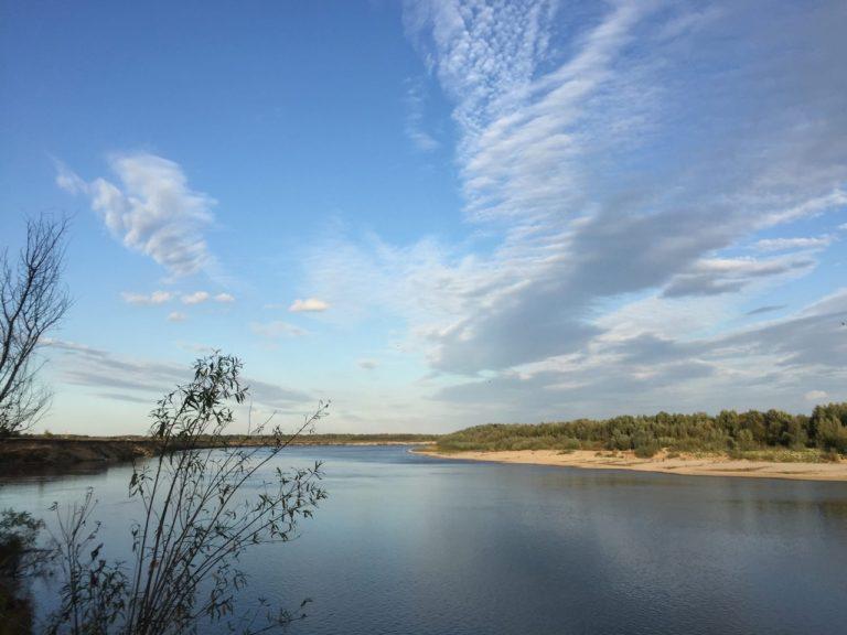 Отчет о рыбалке: Река Ока — Китовское сельское поселение — Центральный федеральный округ, Рязанская область