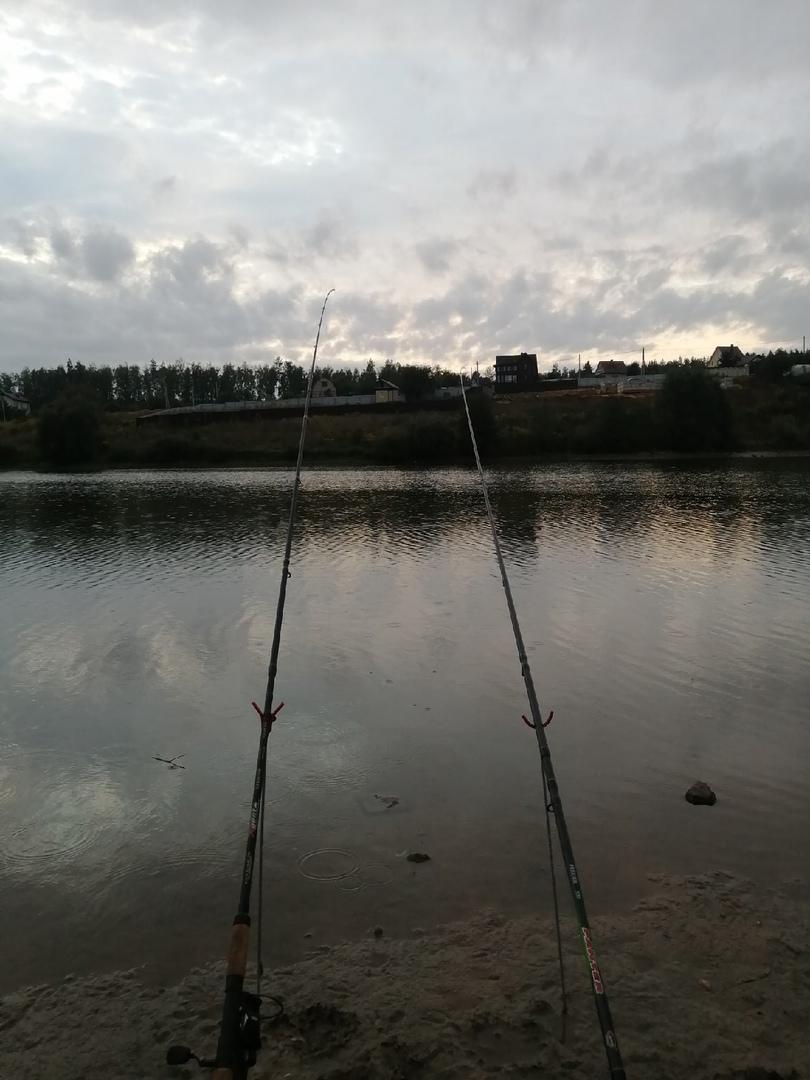 Отчет о рыбалке: Водоём #664721589 — Орловский муниципальный округ — садовое некоммерческое товарищество Зелёный Шум — Центральный федеральный округ, Орловская область