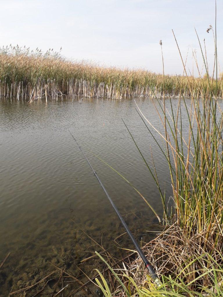 Отчет о рыбалке: Река ер. Раскаты — Ленинский район — Южный федеральный округ, Волгоградская область