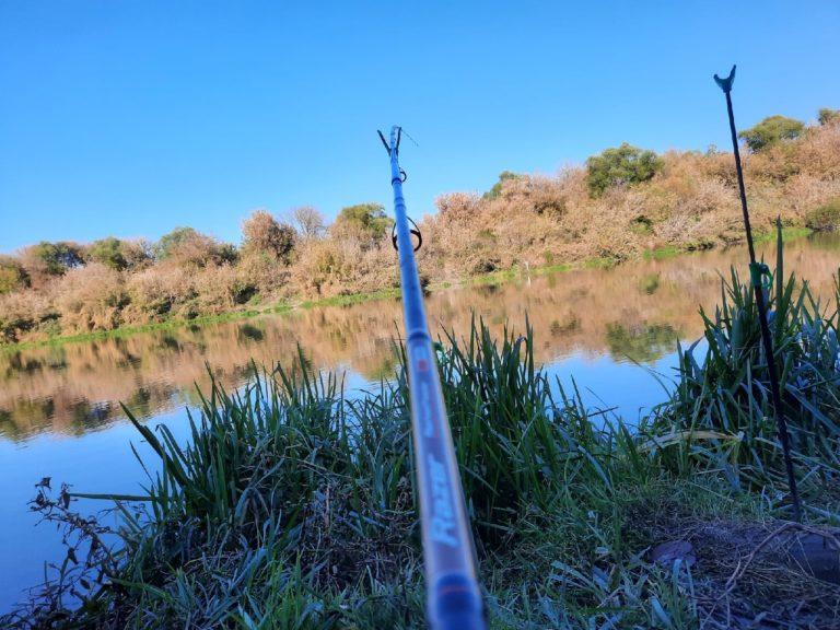 Отчет о рыбалке: Река Дон — городской округ Елец — Елец — Центральный федеральный округ, Липецкая область