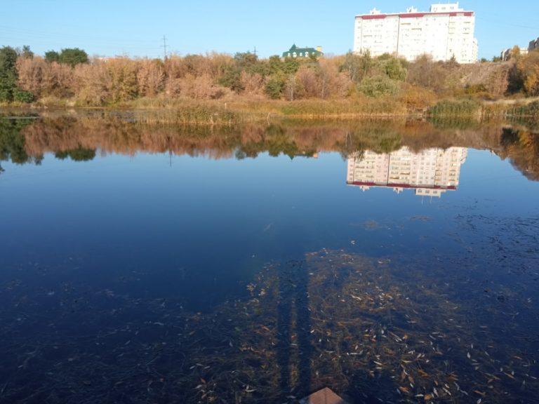 Отчет о рыбалке: Водоём #36737560 — городской округ Орёл — Орёл — Центральный федеральный округ, Орловская область