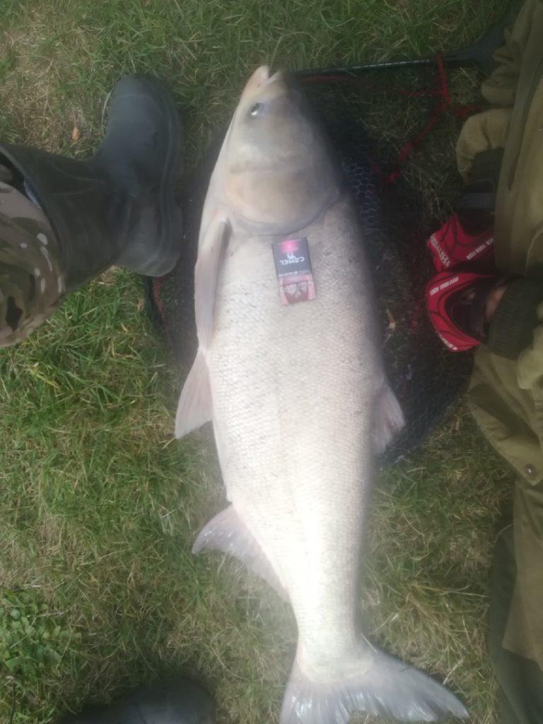 Отчет о рыбалке: Река Топлинка — Белгородский район — Центральный федеральный округ, Белгородская область