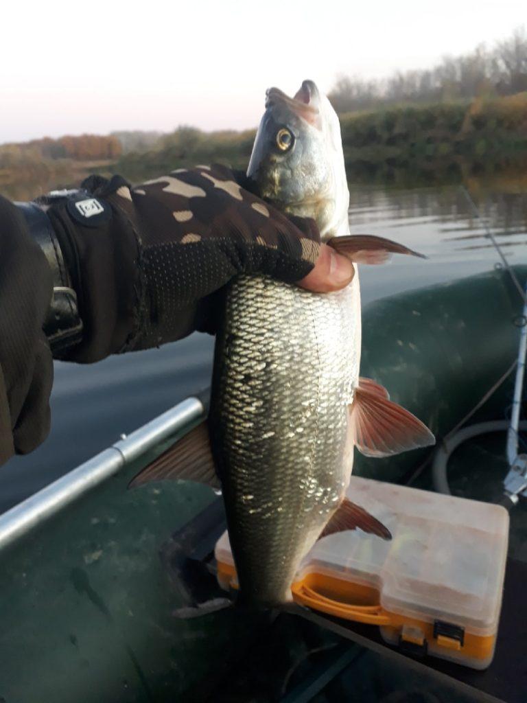 Отчет о рыбалке: Река Чёрная — Оренбургский район — Приволжский федеральный округ, Оренбургская область